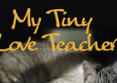My Tiny Love Teacher